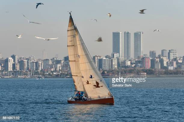 Yacht Racing on the Marmara