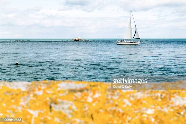yacht sailing along coast - dalkey stock pictures, royalty-free photos & images
