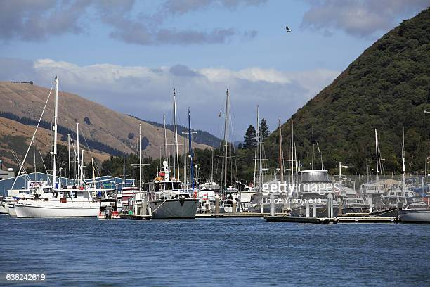 Yachts and fishing boats docking in Port Motueka