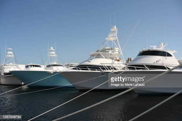 yachts docked in marina - fishing boat stock pictures, royalty-free photos & images