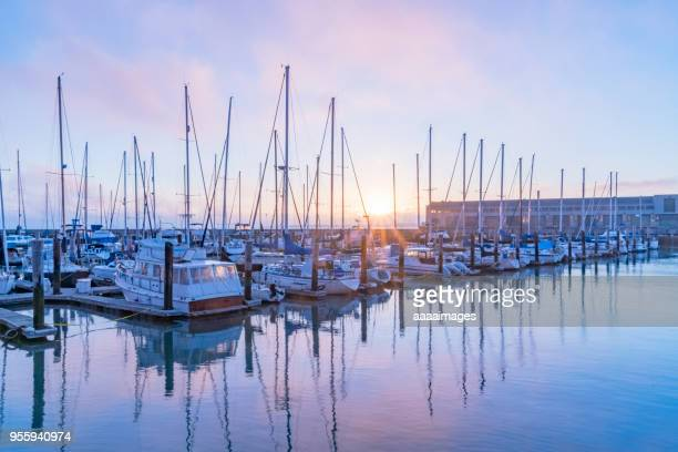 yachts moored at pier against purple sky - marina stock pictures, royalty-free photos & images