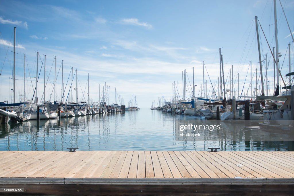 Yachts moored in a harbor : Stock Photo