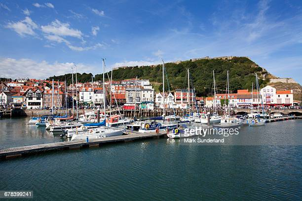 yachts moored in the old harbour below castle hill, scarborough, yorkshire, england, united kingdom, europe - scarborough uk stock pictures, royalty-free photos & images