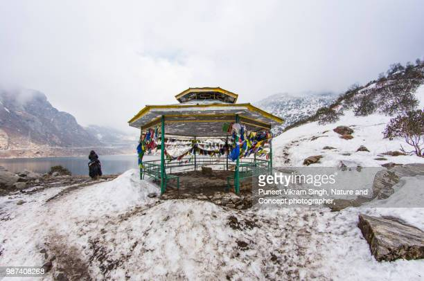 yak ride at changu or tsomgo lake east sikkim - northeast india stock photos and pictures