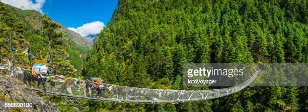 Yaks crossing rope bridge across mountain canyon panorama Himalayas Nepal
