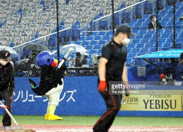 Yakult Swallows mascot Tsubakuro performs is seen during the game between Chunichi Dragons and Yakult Swallows at the Jingu Stadium on June 19 2020...