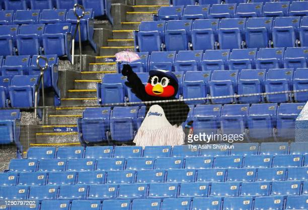 Yakult Swallows mascot Tsubami performs in the empty stand during the game between Chunichi Dragons and Yakult Swallows at the Jingu Stadium on June...
