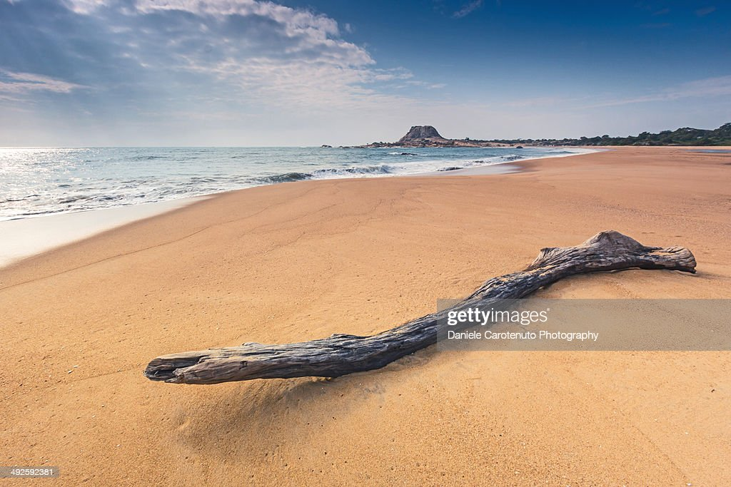 Yala beach : Stock Photo