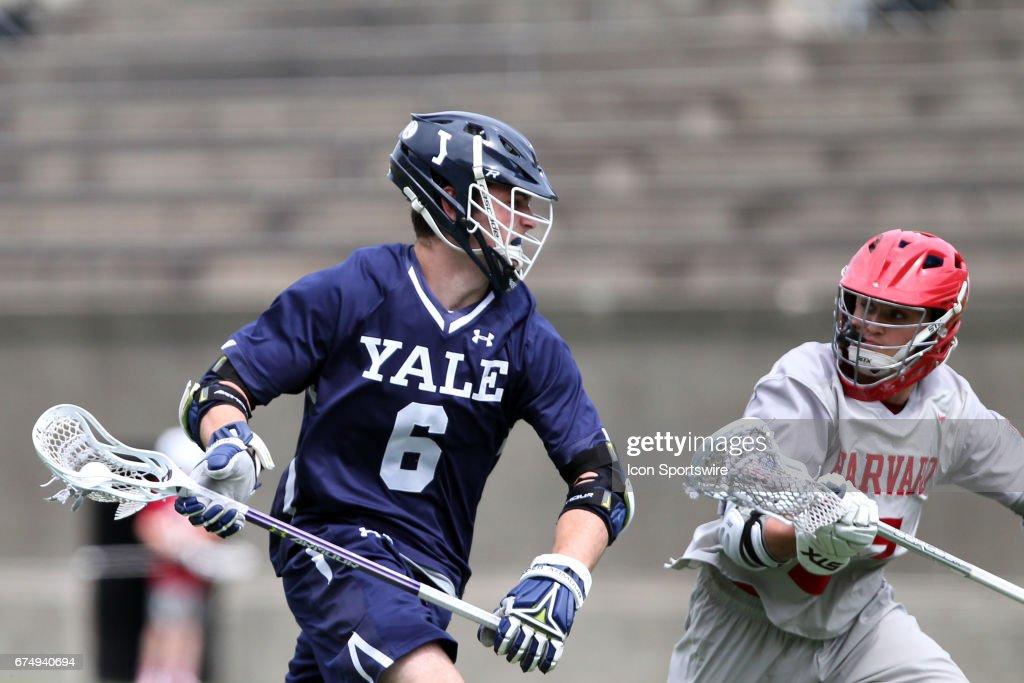 COLLEGE LACROSSE: APR 29 Yale at Harvard : News Photo