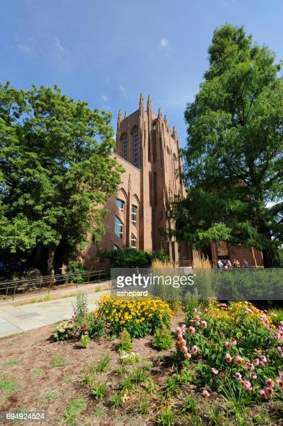 yale peabody museum of natural history in connecticut - natural history museum stock pictures, royalty-free photos & images