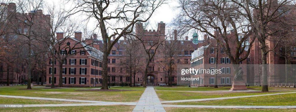 Yale University campus : Stock Photo