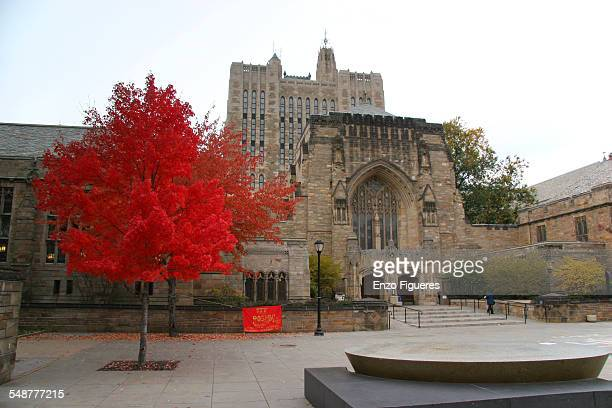 Yale University Library November 8, 2005