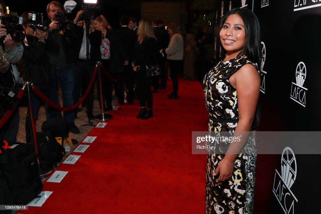 44th Annual Los Angeles Film Critics Association Awards - Red Carpet : News Photo
