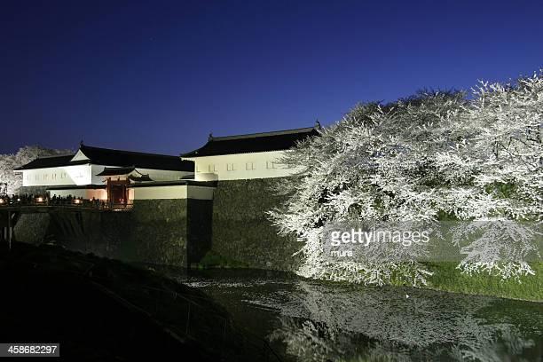ヤマガタ(別名 Kasumiga )城の桜の花