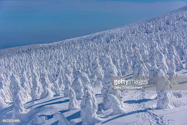yamagata zao ice monster - 山形県 ストックフォトと画像