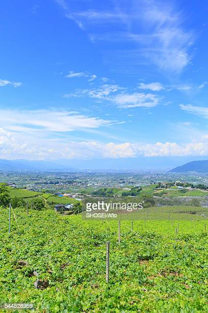 yamanashi prefecture, japan - yamanashi prefecture stock pictures, royalty-free photos & images
