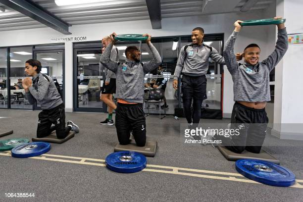 Yan Dhanda Leroy Fer Luciano Narsingh and Martin Olsson exercise in the gym during the Swansea City Training at the Fairwood Training Ground on...