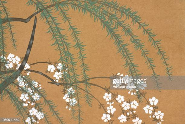 Yanagi Sakura from Momoyogusa The World of Things Vol II pub1909 colour block woodcut A Willow and Cherry Blossoms