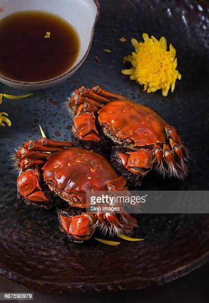 Yangcheng Lake Hairy Crabs