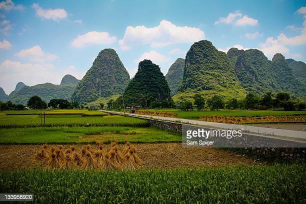 yangshou limestone formations, china - yangzhou foto e immagini stock