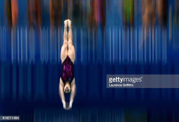 Yani Chang of China practices ahead of the Womens 3m Sychro Springboard Final on day four of the Budapest 2017 FINA World Championships on July 17...