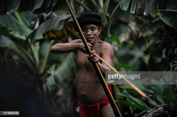 A Yanomami native man mans his bow and arrow at the Irotatheri community Amazonas state southern Venezuela 19 km away from the border with Brazil on...