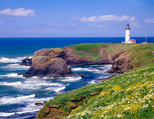 """Yaquina Lighthouse, Oregon"""
