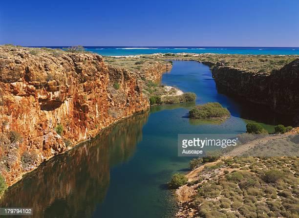 Yardie Creek habitat of the rare Blackfooted rockwallaby Cape Range National Park Exmouth Western Australia