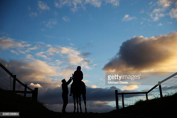 Yardman Neil Mansbridge adjusts the reigns of a horse ahead of first lot on the lower schooling ground at Sandhill Racing Stables on October 8 2015...
