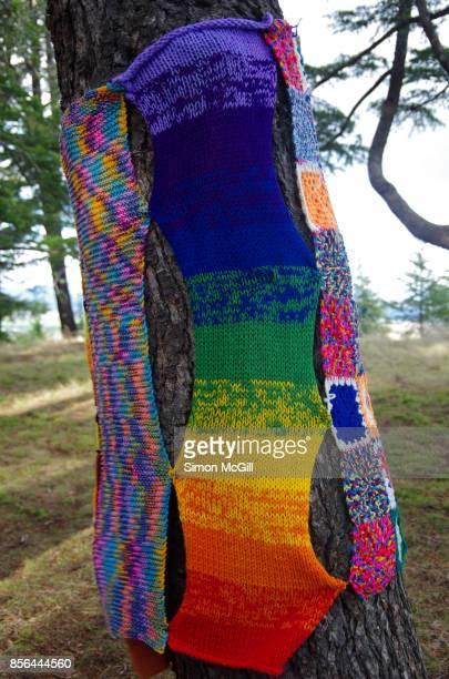 Yarn bombing on a tree at the National Arboretum, Canberra, Australian Capital Territory, Australia