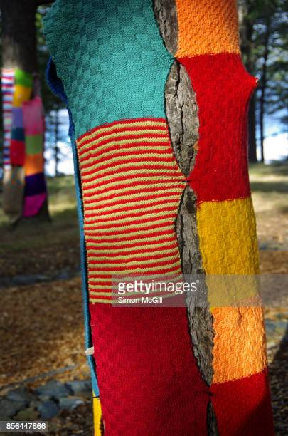 yarn bombing on a tree at the national arboretum, canberra, australian capital territory, australia - yarn bombing stock photos and pictures