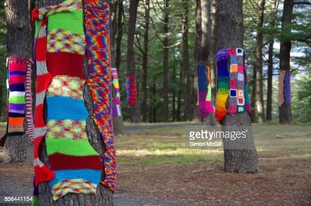 Yarn bombing on trees at the National Arboretum, Canberra, Australian Capital Territory, Australia