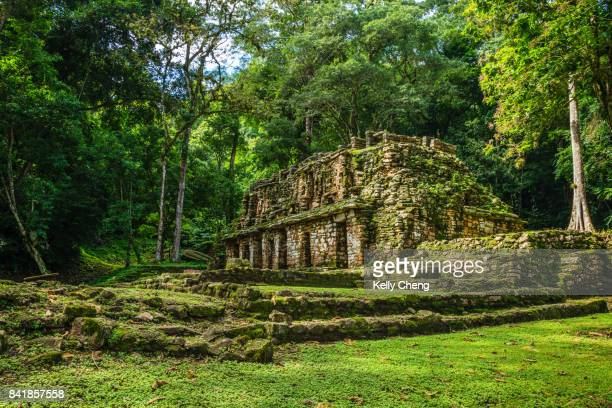 Yaxchilán, Maya ancient city