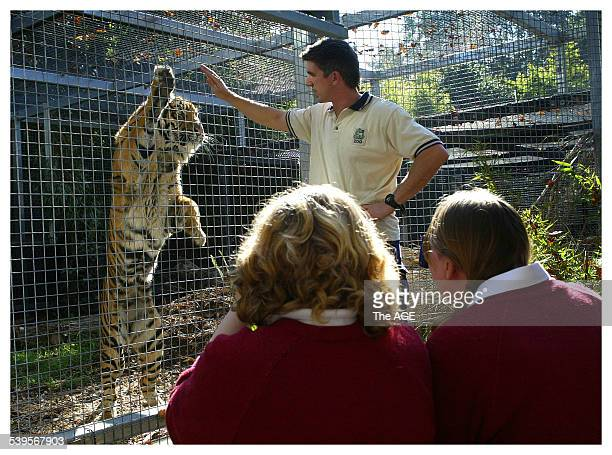 Year 8 students from Cape Clear near Ballarat learn about Sumartran Tigers at Melbourne Zoo. Tuesday 17 May 2005 THE AGE NEWS Picture by CRAIG ABRAHAM