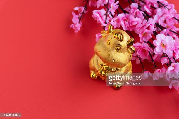 year of the ox chinese new year concept - wild cattle stock pictures, royalty-free photos & images