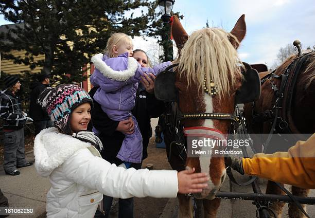 8 year old Alyssa Linson seems delighted to gently pat Spike Spike a Belgian draft horse on the nose in downtown Breckenride Mountain Man Carriage...