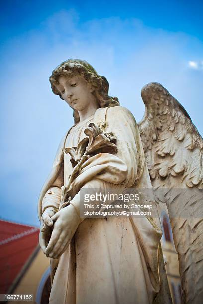 200 year old Angel