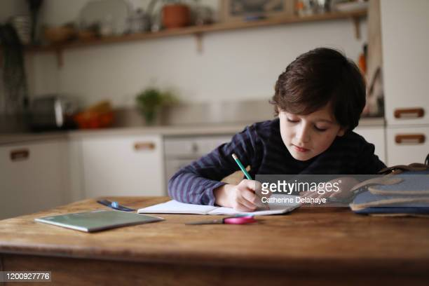 a 9 year old boy doing his homework in the kitchen - pencil case stock pictures, royalty-free photos & images