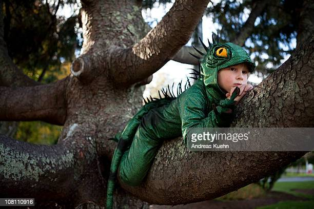 7 year old boy relaxing in a tree