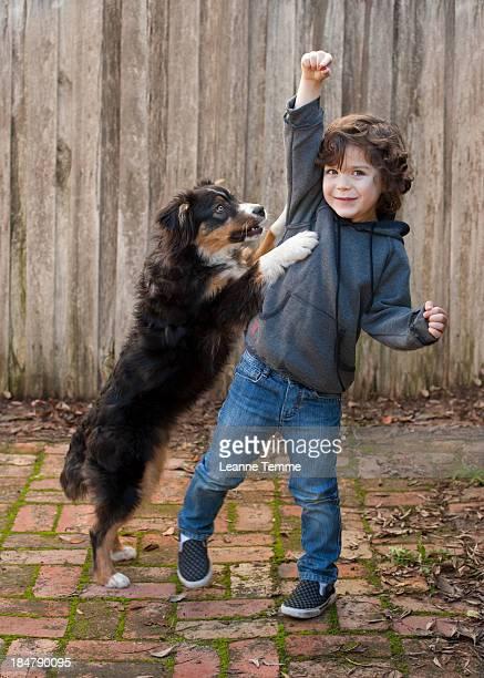 4 year old boy with Australian Shepherd and treat