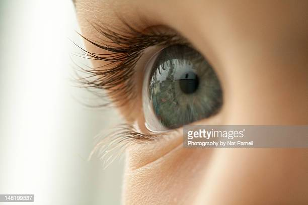 4 Year Old Eyes