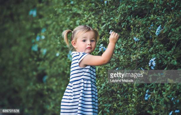 2 Year Old Girl Caught Picking Flowers