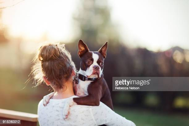 10 year old girl holding her boston terrier dog - pet owner stock pictures, royalty-free photos & images