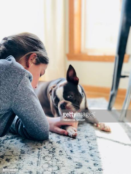 10 year old girl playing with her Boston Terrier dog on the floor in her home