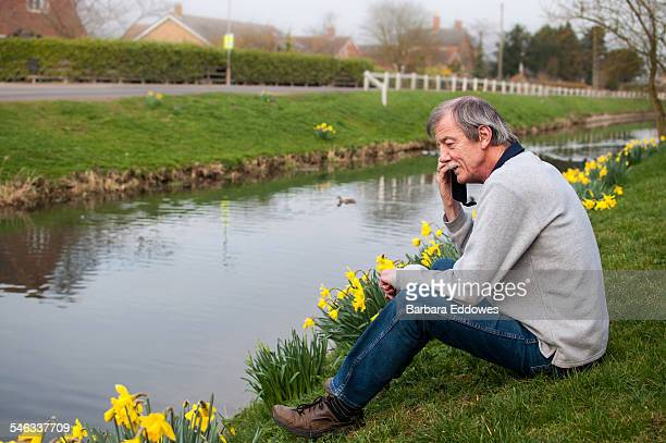 A 65 year old man sitting on a riverbank using a mobile phone Daffodils are in bloom around him