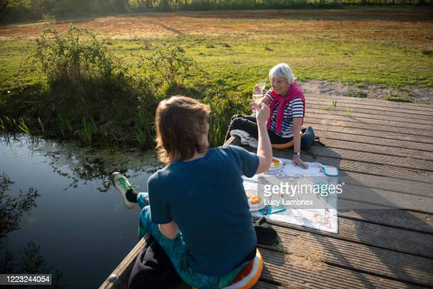 54 year old woman having a picnic with her 88 year old mother - picnic stock pictures, royalty-free photos & images