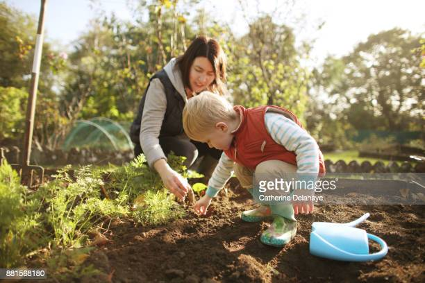 a 3 years old boy and his mum are gardening - 2 3 years stock pictures, royalty-free photos & images