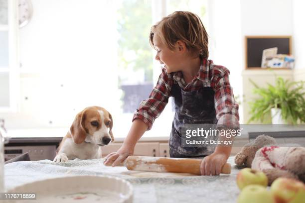 a 4 years old boy cooking at home with his dog - 4 5 years stock pictures, royalty-free photos & images