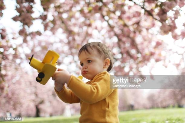 a 2 years old boy playing with a plane in a flowered park - 2 3 years stock pictures, royalty-free photos & images
