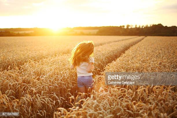 A 8 years old girl in a wheat field